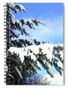 Winter Boughs Spiral Notebook