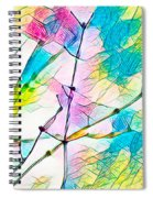 Winter Branch Colors Spiral Notebook