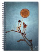 Winter Branch Spiral Notebook
