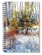 Winter Calm Spiral Notebook