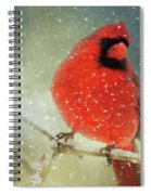 Winter Card Spiral Notebook