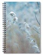 Winter Cardinal Spiral Notebook