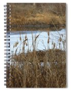 Winter Cattails  Spiral Notebook