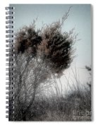 Winter Cedar Spiral Notebook