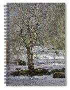 Winter Colors On The Klawock Spiral Notebook