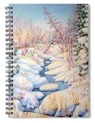 Winter Creek 1  Spiral Notebook