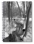 Winter Creek Spiral Notebook