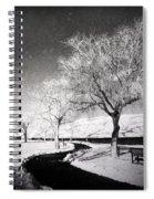 Winter Darkness Spiral Notebook
