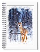 Winter Deer 1 Spiral Notebook