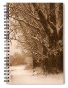 Winter Dream Spiral Notebook