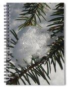 Winter Evergreen Spiral Notebook