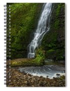 Winter Falls Spiral Notebook