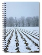 Winter Field Spiral Notebook