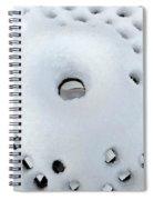 Winter Filigree Spiral Notebook