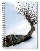 Winter Finery Spiral Notebook