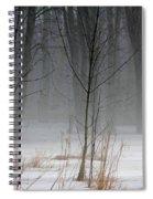 Winter Fog Spiral Notebook