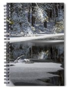 Winter Fresh Spiral Notebook