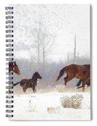 Winter Gallop Spiral Notebook