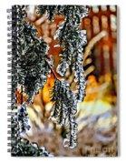 Winter Glow Spiral Notebook