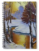 Winter Gold Spiral Notebook