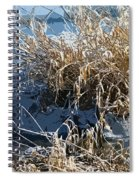 Winter Grass Spiral Notebook