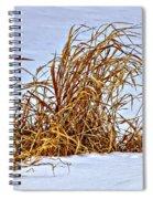 Winter Grasses Spiral Notebook