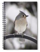Winter Gray - Bird Spiral Notebook