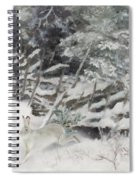 Winter Hare At The Fence Spiral Notebook