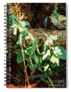 Winter Hideout Spiral Notebook