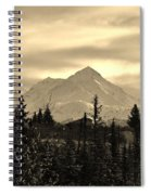 Winter In Black N White Spiral Notebook
