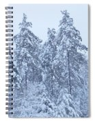 Winter In Maine 2017 Spiral Notebook