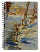 Winter In Mat Spiral Notebook