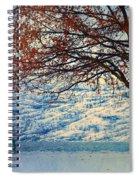 Winter In Peachland Spiral Notebook
