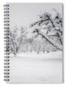 Winter In The Orchard Spiral Notebook