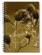 Winter Jewels Spiral Notebook