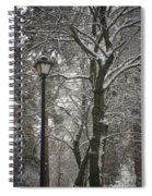 Winter Lamp Post Spiral Notebook