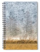 Winter Layers Spiral Notebook