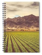 Winter Lettuce Spiral Notebook