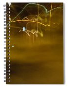 Winter Lights Spiral Notebook