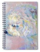 Winter Mickee Spiral Notebook