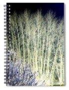 Winter Moonlight Spiral Notebook