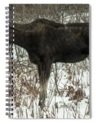 Winter Moose Spiral Notebook