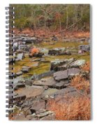 Winter Morning On Marble Creek 1 Spiral Notebook