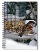 Winter Mornings Spiral Notebook