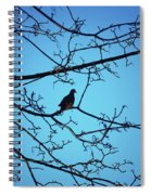 Winter Mourning Spiral Notebook