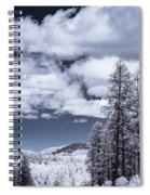 Winter On 89a Spiral Notebook