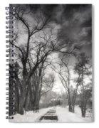 Winter Pathways Spiral Notebook