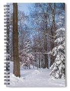 Winter Perfection Spiral Notebook