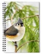 Winter Pine Bird Spiral Notebook