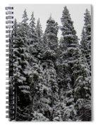 Winter Pine Spires Spiral Notebook